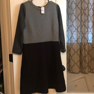 LOFT NWT quilted sweater dress size 10